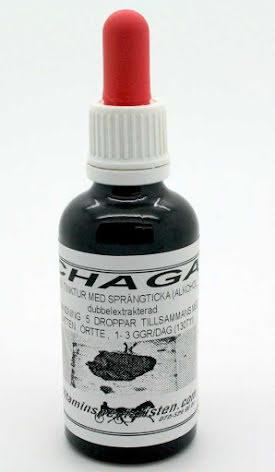 Chaga Elixir i flytande form (sprängticka)