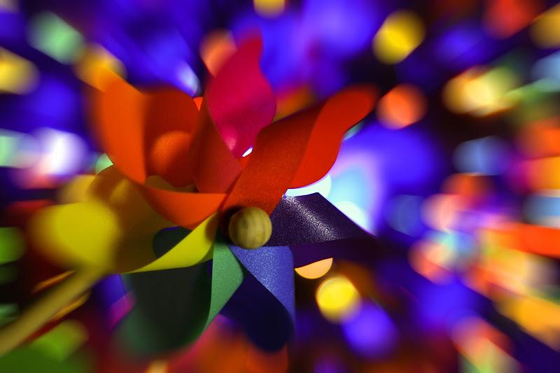 Esplosione di colori di Salvatore Massaiu