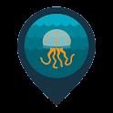 Infomedusa icon