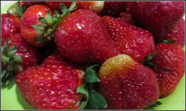 Photo: Căpșuni - (Fragaria ×ananassa) - din Piata Agroalimentara de pe Str. Tineretului - 2017.05.22