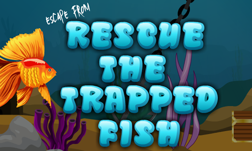 Rescue The Trapped Fish