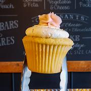 Vanilla Cupcake!