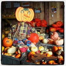 Photo: #Lanaudière #Québec #Canada #Halloween #LaCourgerie