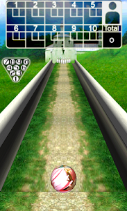 3D Bowling Apk Download For Android 4