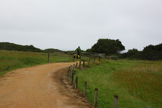 Photo: Year 2 Day 153 -  Wet and Windy on the Rail Trail