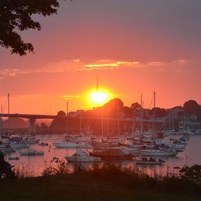 sunset by bridge by Tony Dominguez - Novices Only Landscapes ( sky, sunset, bridge, landscape, boat )