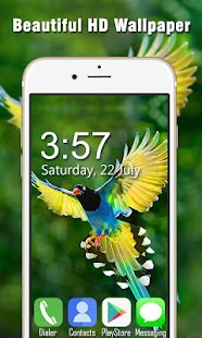 Bird Live Wallpapers HD - náhled
