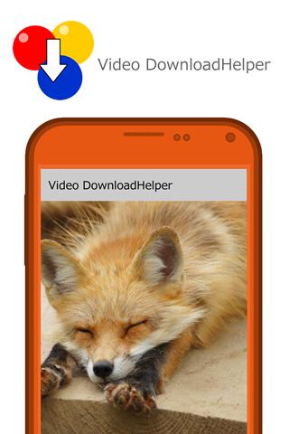 Video DownloadHelper:다운로드 관리자