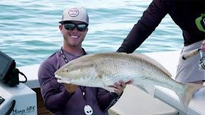 Murphy Tag Team in the Florida Keys thumbnail