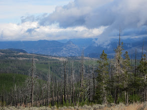 Photo: View near Dunraven Pass