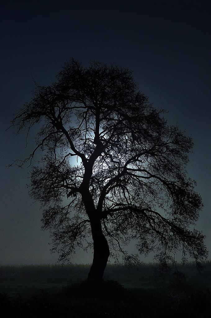 Con la luna alle spalle di ottantuno
