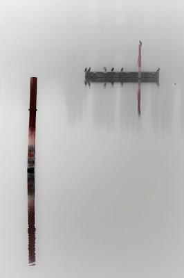 Nel lago con la nebbia... tutto cambia di AnUseless