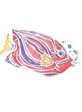 Photo: Fish 1