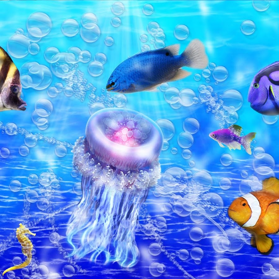 Fish live wallpaper android apps on google play for Fish live wallpaper