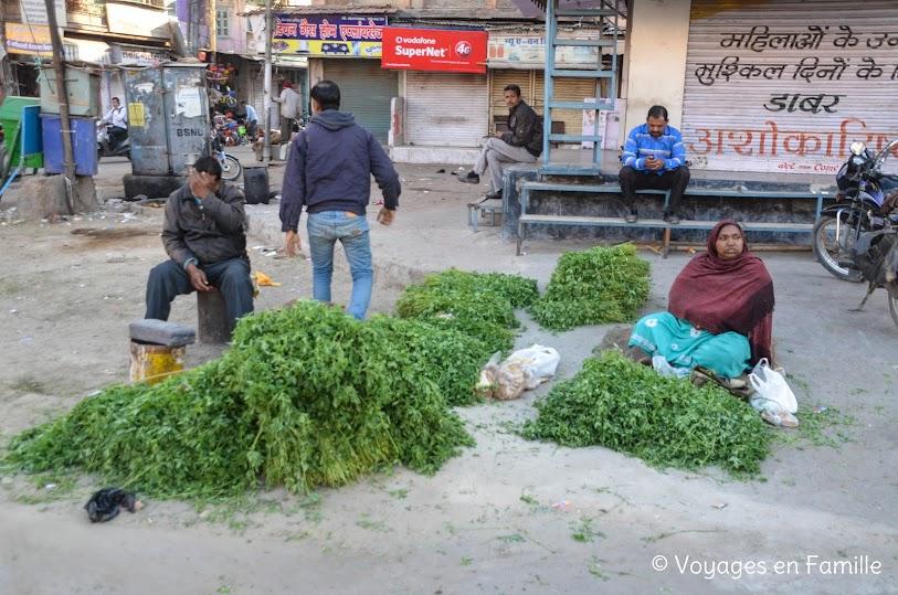 offrandes jodhpur