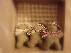 Photo: gingerini tilda