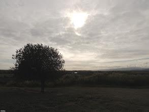 Photo: wormhole  #treetuesday // +Tree Tuesday by +Shannon S. Myers // +Christina Lawrie #photoplusextract by +Jarek Klimek #fotoamateur // +Fotoamateur by +Markus Landsmann // +Karsten Meyer // +Scotti van Palm // +Remo Primatesta