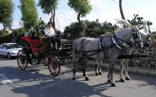 Carriage Vis-a-vis Victorian Rent Central Region