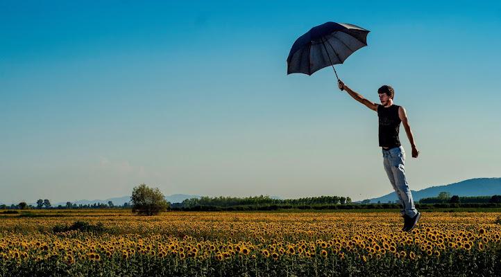 Volando via  di Simone Fedeli