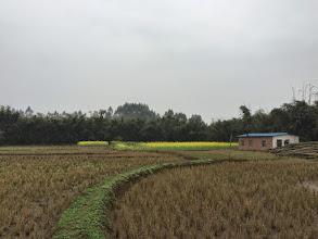 Photo: 広い農地。ここで有機栽培がはじまるか?