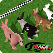 Rabbit Racing Adventure 3D