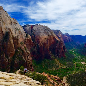 Mobile ZION by Natures Grenade - Instagram & Mobile Android