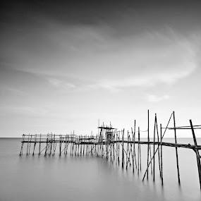 bamboo bridge_BW.jpg