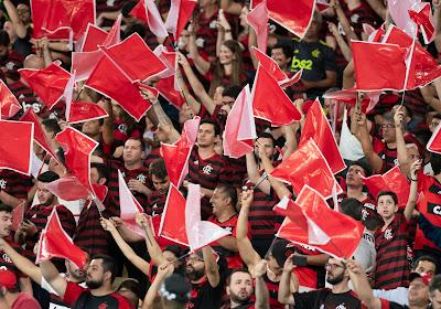 Flamengo en liesse : champion du Brésil quelques jours après la Copa Libertadores !