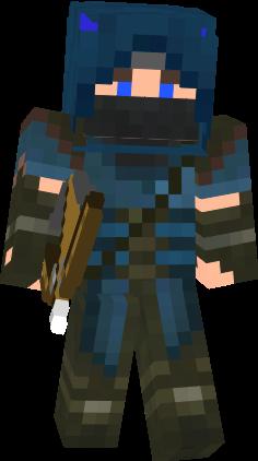 Blue Archer Ninja Nova Skin