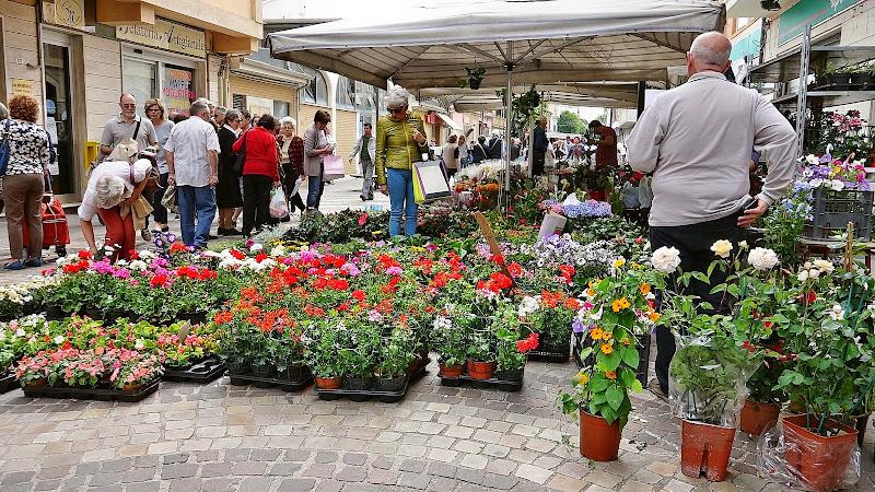 mercato dei fiori di Marygio16