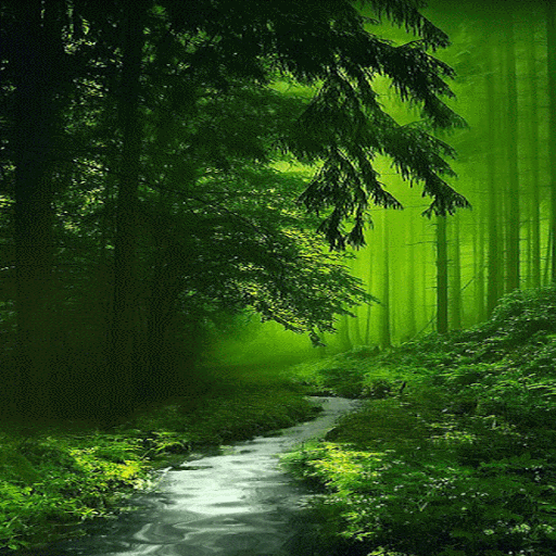 Nature Green Forest LWP Android APK Download Free By Daksh Apps