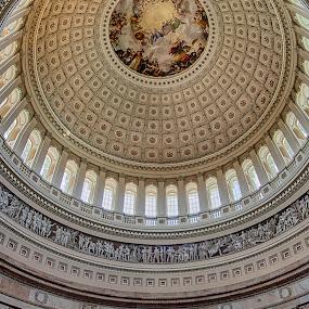 The Rotunda by Craig Pifer - Buildings & Architecture Public & Historical ( dc, washington d.c., detail, vertorama, hdr, rotunda, us capitol, inside, dome, washington dc, government, capital )