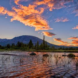 Skogshorn by John Aavitsland - Landscapes Sunsets & Sunrises ( skogshorn, night, norway, july, summer )