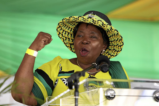 Determined to succeed: Minister in the Presidency Nkosazana Dlamini-Zuma has requested that the province co-operate with ministers and their officials, as they had done with her task team. Picture: SUPPLIED