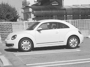 ザ・ビートル Special bugのカスタム事例画像 eikoさんの2018年06月02日17:34の投稿