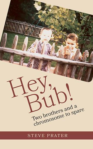 Hey, Bub! cover