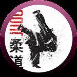 Judo 217