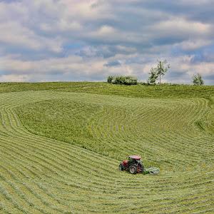 Košnja v hribih.jpg