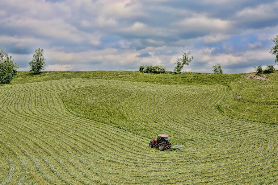 Kosnja v hribih by Milan Mihalič - Landscapes Mountains & Hills (  )