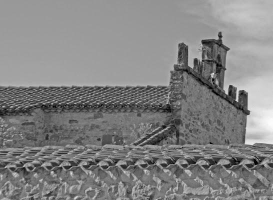 Culto campestre di FabioMuscasFotografia