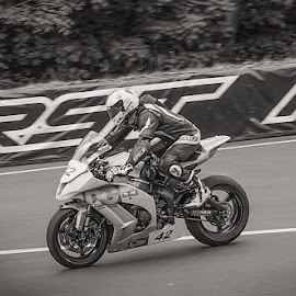 TT Racing by Paul Milligan - Transportation Motorcycles ( motorcycle, motorbike, transport, black and white, transportation )