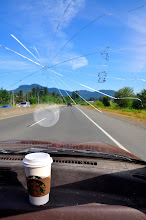 Photo: Green tea and an open road, and a cracked windshield. And the teddy bear sticker imprints are from a former owner. Or so Karsten fervently informs me every time I mention it...