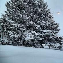 Photo: Me encanta la #nieve  y el #invierno :)