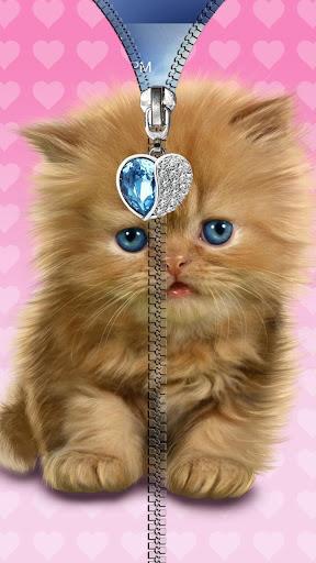 猫锁屏。拉链。