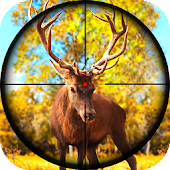 Hunting Animals with Sniper