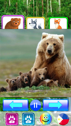 Animal sounds. Learn animals names for kids 5.0 screenshots 14