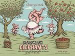 Cherry Creek Ciders Dancing Elephants Cherry Hard Cider