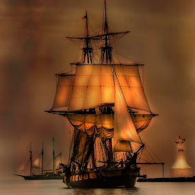 Tall Ships in Hamilton by Sarah Hauck - Transportation Boats ( sail ship, tall ships, sails, sail boat )