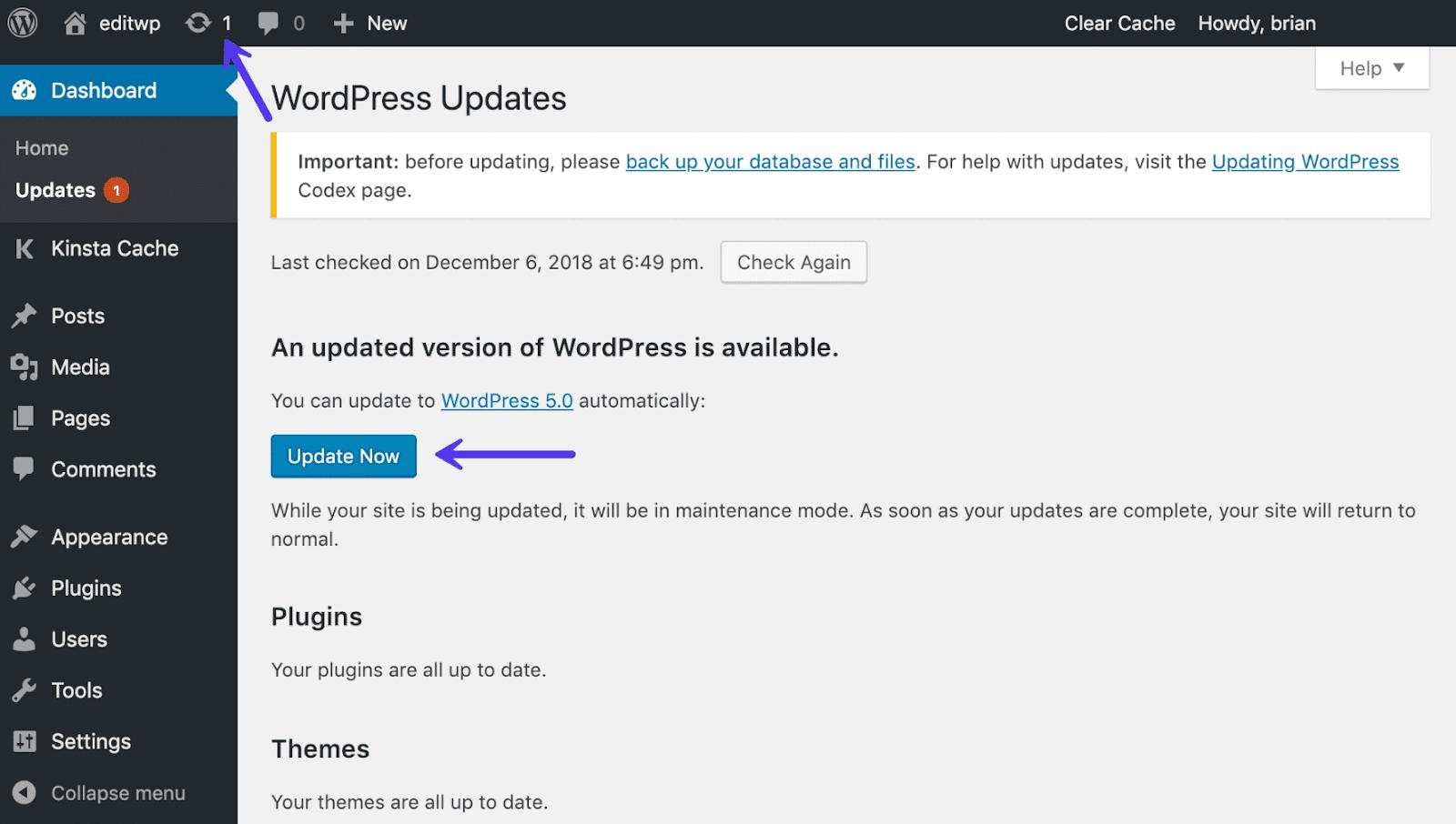 update-to-wordpress-5.0-1.png