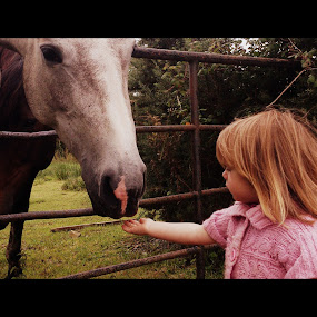Feeding time by Yvette O Beirne - Instagram & Mobile Android ( child, girl, horse )